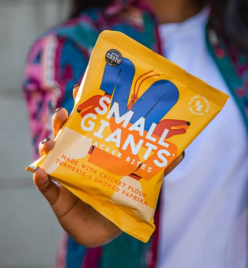 Small Giants, the insect crackers
